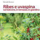 Un libro di Giancarlo Bounous per imparare a coltivare e cucinare ribes e uvaspina