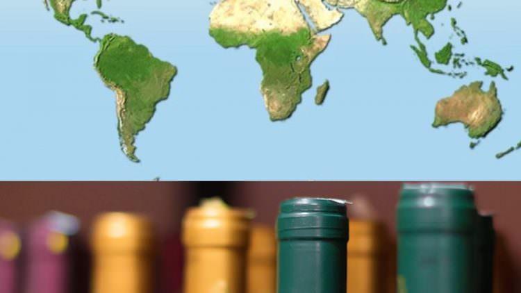 Consumo vino: l'Italia concentra troppo in pochi paesi, forse con  ecommerce…