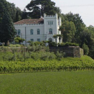 Vino, Villa Russiz festeggia con una bottiglia Limited Edition