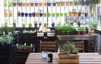 Milano Food Week: i Vini siciliani di Donnafugata nell'Orto, erbe e cucina