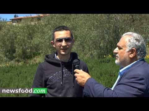 Salvo Lombardo: erbe aromatiche artigianali in quantità industriale (Video)