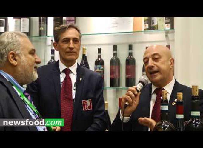 Francesco Galeone e Antonio Monaco, ONAV di Verona a Vinitaly 2018 (Video)