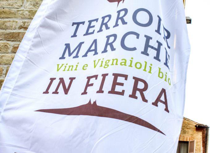 Terroir Marche Festival a Macerata: festa dei vini biologici