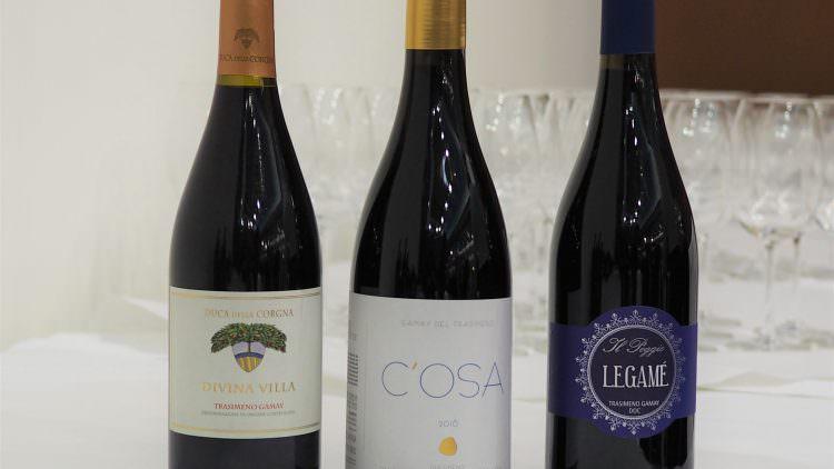 Al Grenaches du Monde trionfano i vini del Trasimeno