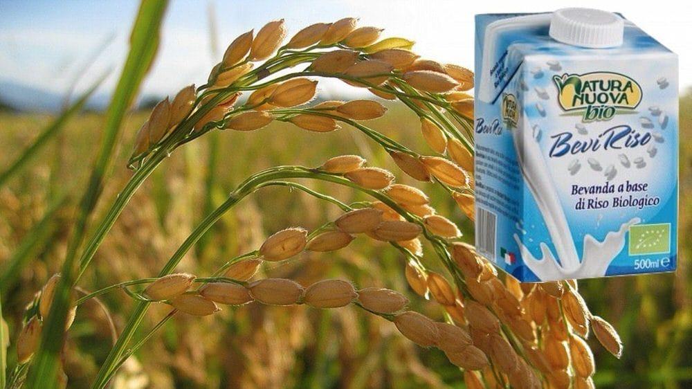 BeviRiso: piacere e benessere senza lattosio