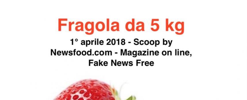 Guerra alle Fake news by Yakult Italia e Osservatorio Senior