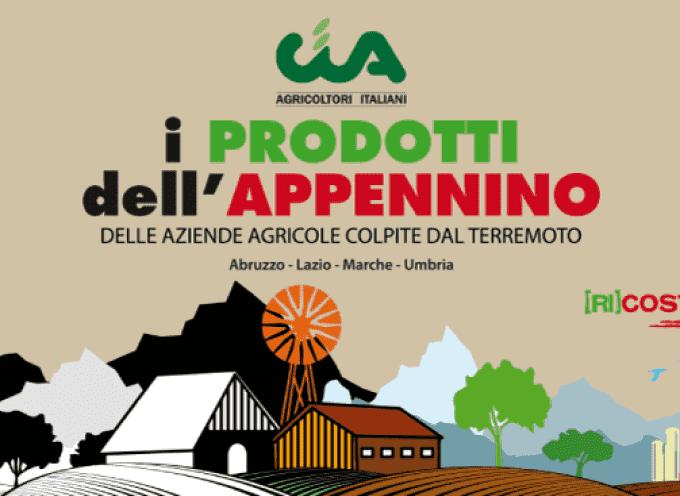 """""""I prodotti dell'Appenino"""": al Salone del Gusto (e su Amazon)"""