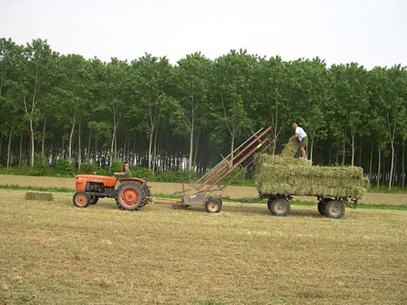 """Fertilizzanti, da Bruxelles il nuovo regolamento. Assofertilizzanti: """"Passo epocale"""""""