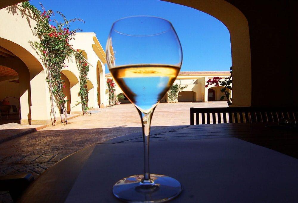 Tenuta Gorghi Tondi, tra storia siciliana e grandi vini… biologici