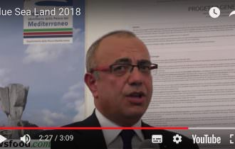 Blue Sea Land 2018: un successo meritato (Video)