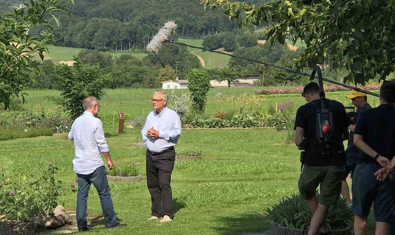 Ricola, la danza delle erbe svizzere