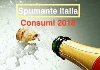 Spumanti Italia sintesi consumi 2018