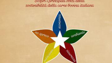 Carne Bovina: informazioni e i dati scientifici by ASSOCARNI e MIPAAFT