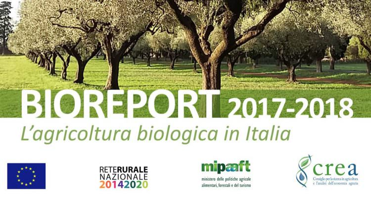 BIOREPORT 2017-2018