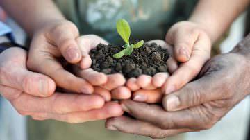 Agricoltura centrale per ambiente