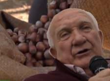 Nocciola Piemonte IGP dell'Alta Langa è in arrivo – Gianfranco Cavallotto – Video