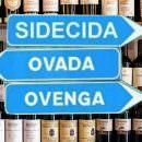 GUIDE VINI IN CALO DI APPEAL… IL VINO HA ANCORA BISOGNO DI ASSAGGIATORI-GUIDA?