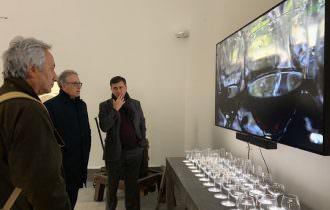 MAVV-Wine Art Museum: Anteprima a Vinitaly per il Museo dell'Arte della Vite e del Vino