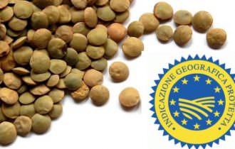 Filiera dei prodotti della Murgia: grano duro e  lenticchia di Altamura