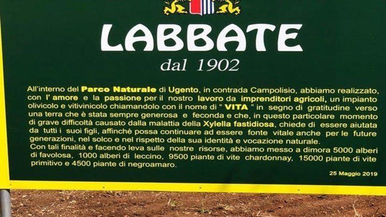 Labbate, 120 anni di olio extra vergine del Salento… Primitivo, Negroamaro