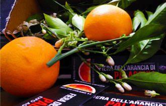 Distretti del Cibo: avanti a tutta forza verso il Distretto delle Filiere del Cibo Siciliano