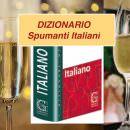 DIZIONARIO PER GLI SPUMANTI ITALIANI… IN LINGUA ITALIANA e glossario dei vini