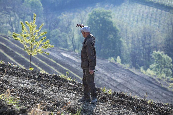 GRAVNER: BIANCO BREG 2011, SOLO 3000 BOTTIGLIE