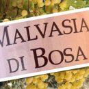 Malvasia di Bosa DOC: vino secco, abboccato, amabile, dolce