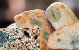 Etanolo come antimuffa negli alimenti… è vietato o no?