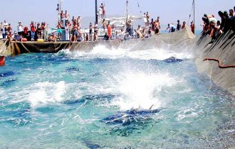 Pesca tonno Sicilia, dopo l'assegnazione delle quote pesca, minaccia una nuova chiusura la storica Tonnara di Favignana