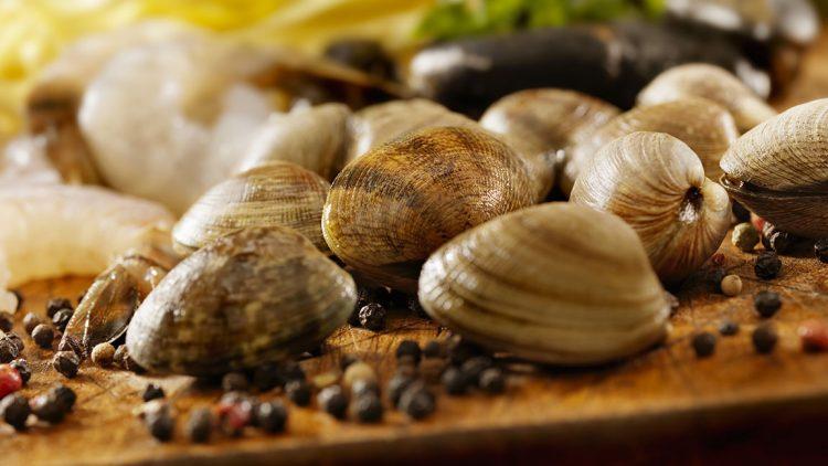 Vongole veraci, buone e salutari – Ricetta Crema di spinaci e vongole