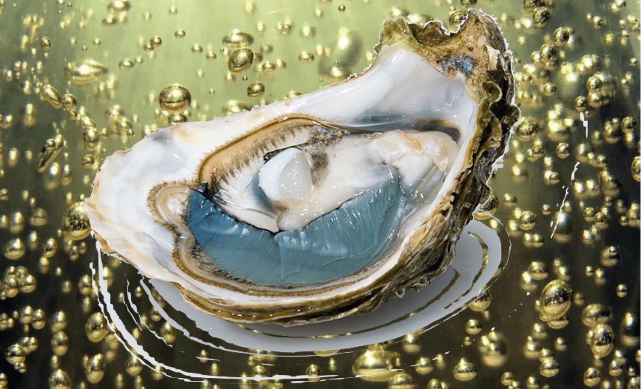 Riccione Ostriche e Bollicine al 137 – Love Your Sea … Mojito Beach
