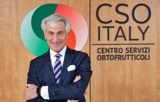 """Emergenza cimice asiatica, Paolo Bruni: """"Non si può aspettare"""""""