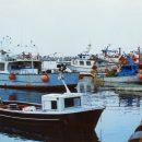 Proteste internazionali e del Distretto della pesca di Mazara del Vallo per l'accordo tra Federpesca e l'autorità della Cirenaica