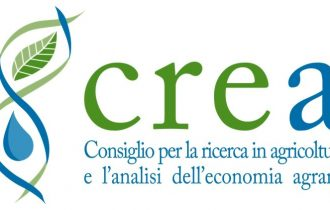 Inran Crea, il sito per costruire con gusto il proprio benessere a tavola