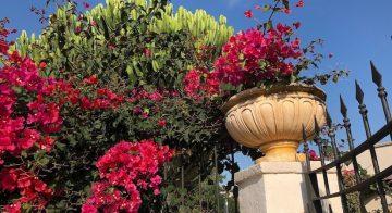 Casa Vacanza in Sicilia a Mazara del Vallo da Patrizia e Salvatore