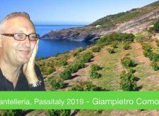 Pantelleria, Passitaly 2019 – Il vero Zibibbo è solo qui… dove si vendemmia in ginocchio