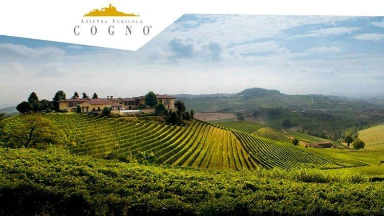La cantina Elvio Cogno tra le TOP 100 WINERIES per la rivista americana Wine&Spirits