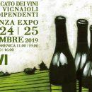 Lorenzo Accomasso, Vignaiolo dell'anno per la Federazione Italiana Vignaioli Indipendenti (FIVI)