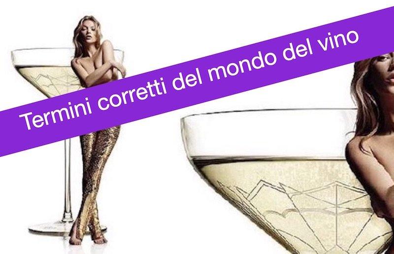 Vademecum spumanti d'Italia: termini, metodi, dosaggi, bottiglie… by Giampietro Comolli