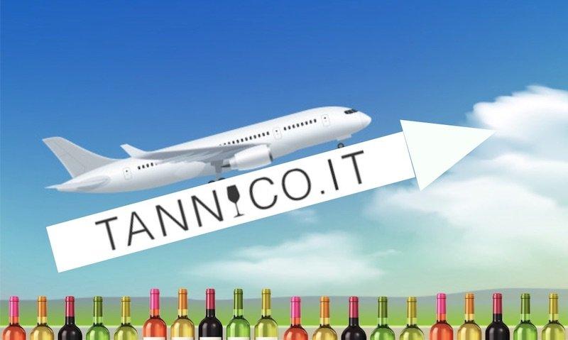 Tannico.it, vola il fatturato del più grande portale italiano ecommerce del vino