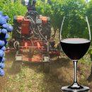 Vino Italiano post Coronavirus – Amarcord in vigna e in cantina by Giampietro Comolli