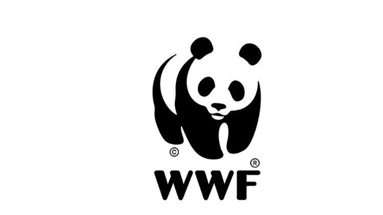 Coronavirus, WWF Italia: Legame strettissimo tra pandemie e perdita di natura