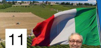 11 #POSTCORONAVIRUS: AGRICOLTURA VITE E VINO, by Comolli