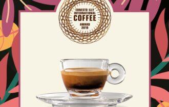 illycaffè ti porta in viaggio alla scoperta dei migliori raccolti di caffè al mondo