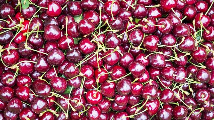 Campagna ciliegie, Melinda anticipa la raccolta