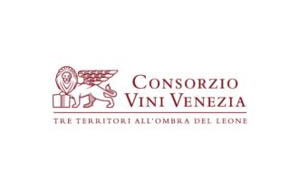 L'Assemblea dei Soci del Consorzio Vini Venezia ha deliberato all'unanimità lo stoccaggio e il blocco del DOC Venezia Pinto Grigio