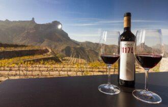 Isole Canarie: dalla Malvasia Vulcanica al Forastera Gomera, alla scoperta dei vini dell'arcipelago