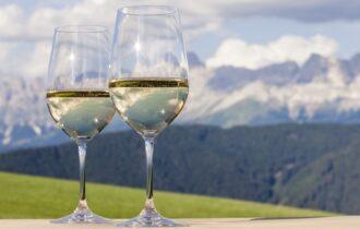 Inizia la vendemmia in Alto Adige: uve di qualità e regole ferree per il rispetto delle norme anti-Covid