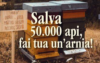 """Adi Apicoltura lancia la nuova iniziativa """"Salva 50.000 Api, adotta un'arnia"""""""